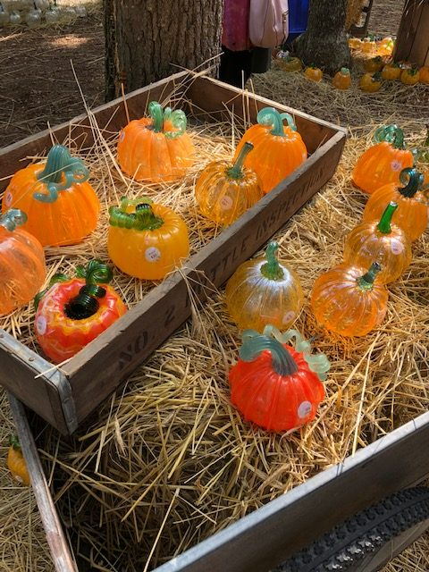 Glass Pumpkin Patch-Blog-O-Ween
