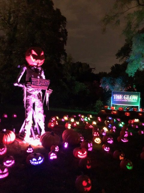 The Glow-Pumpkin