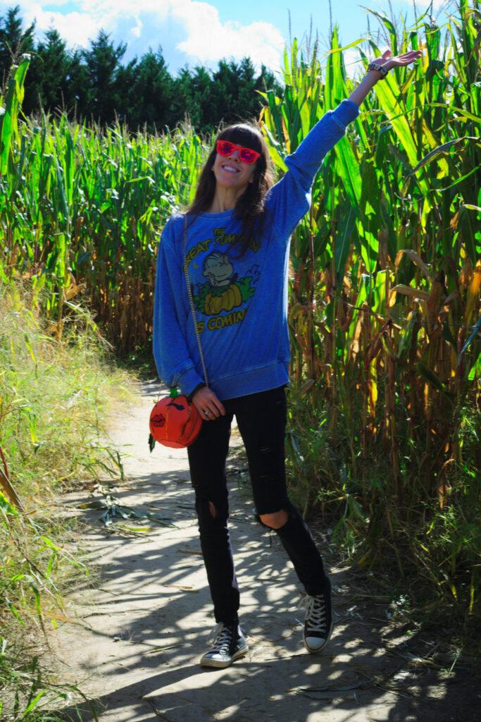 Corn Maze and Pumpkin Picking