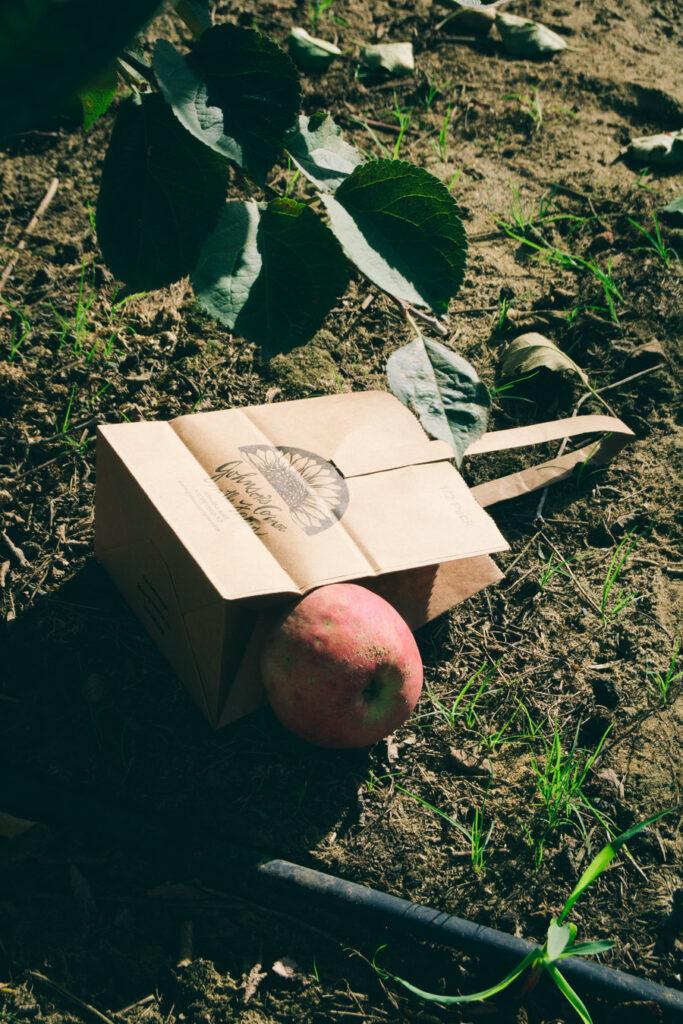 Johnson's Farm Apple Picking