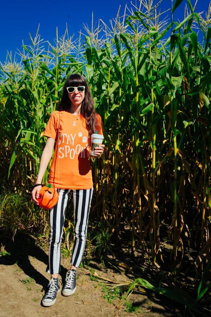 Duffield's Farm Corn Maze