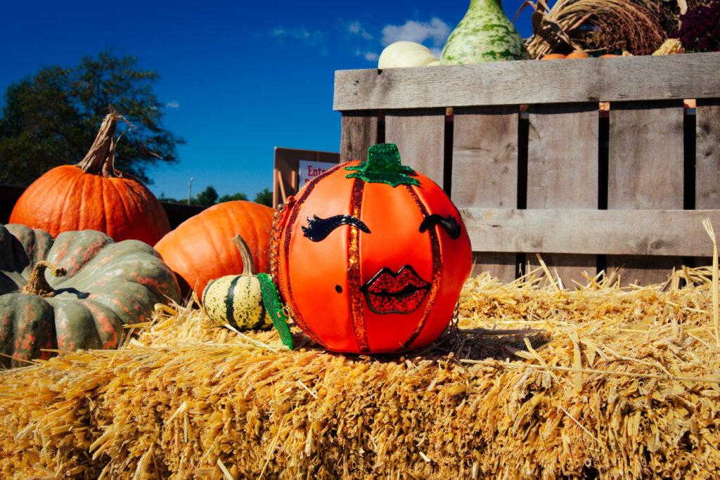 Pumpkin Purse- The Poppy Skull