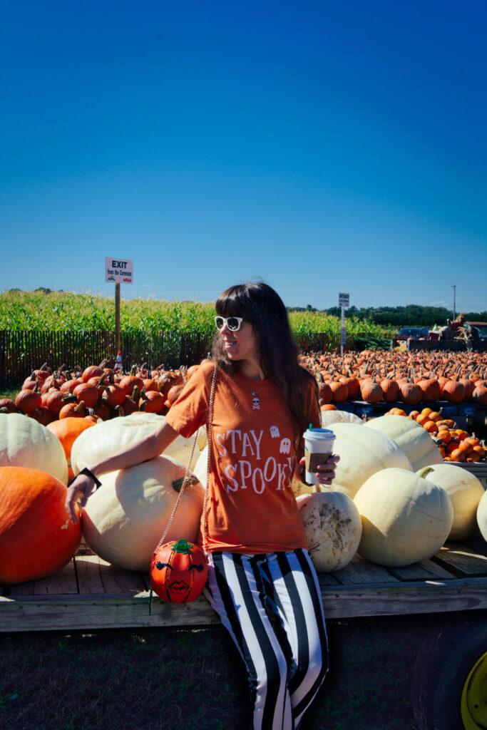 Pumpkin Land at Duffield's Farm