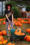 Pumpkin Picking at Barnard's Orchard